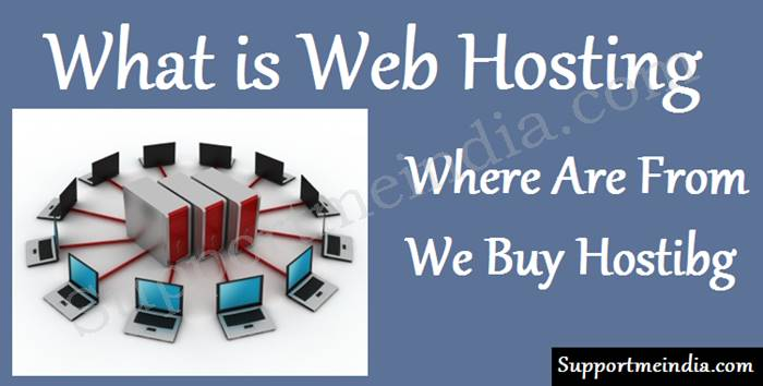 What is web hosting service