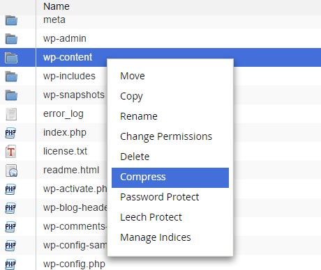 backup wp-content