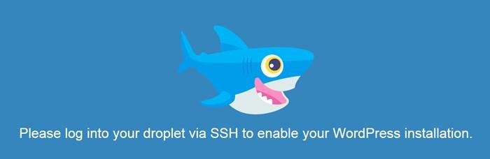 enable WordPress installation