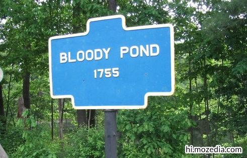Bloody Pond (खुनी तालाब), जापान
