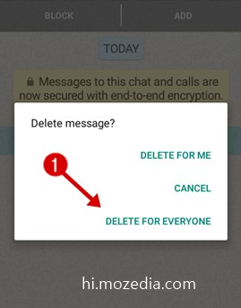 WhatsApp Message Kaise Delete Kare