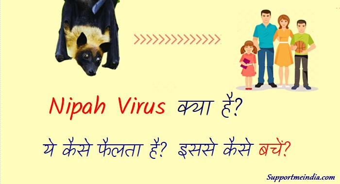 Nipah Virus Kya Hai Is Virus Se Kaise Bache