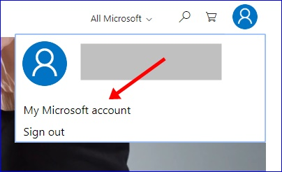 View My Microsoft Account