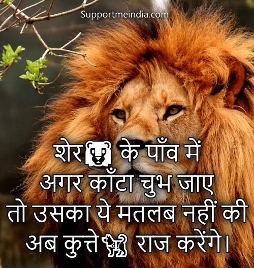 Lion attitude status