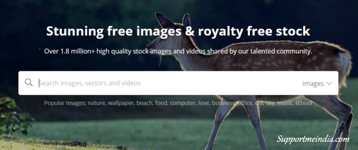Pixabay - royalty free images and videos site